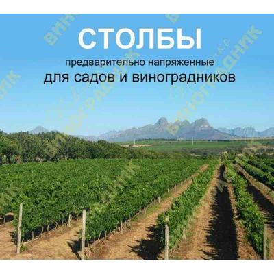 Железобетонные подпоры для винограда