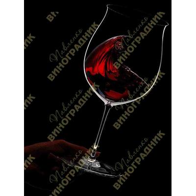 Изготовление домашнего вина 3